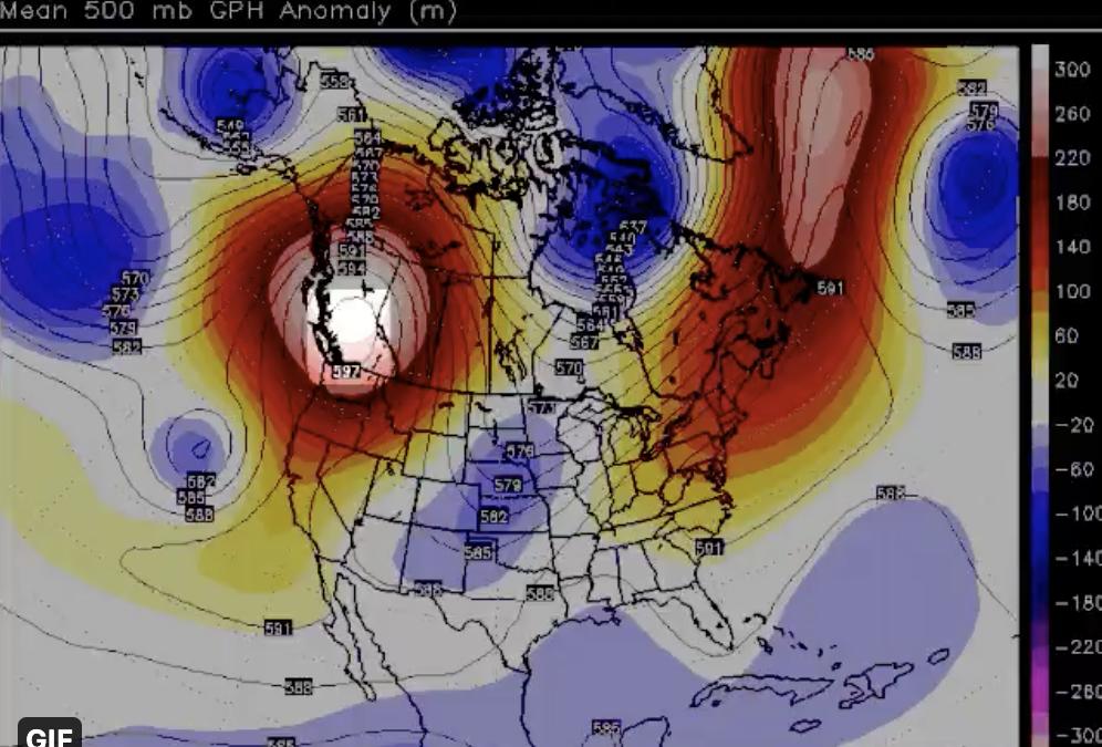 Turno de las olas de calor en el Hemisferio Norte