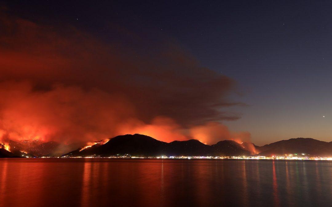 Turquía: ola de calor favorece a los peores incendios en décadas.