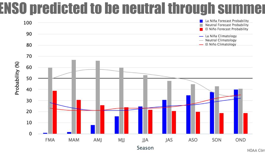 Condiciones neutras ENSO (El Niño – La Niña) al menos, hasta el verano