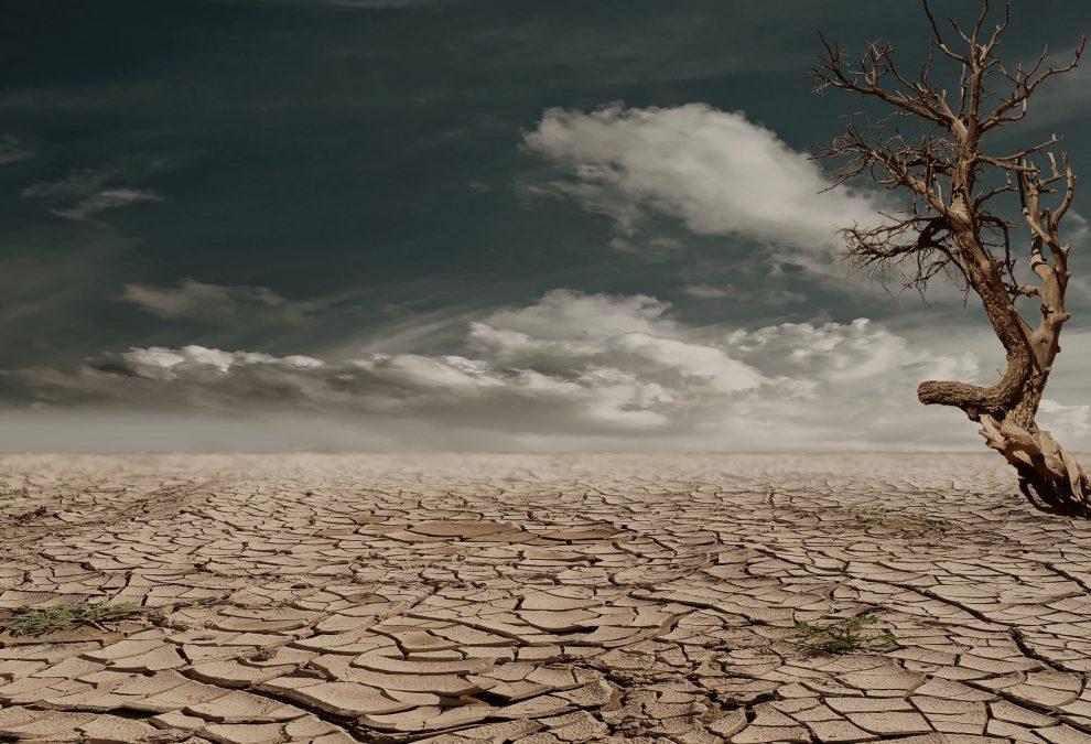 La sequía, siempre rondando en España