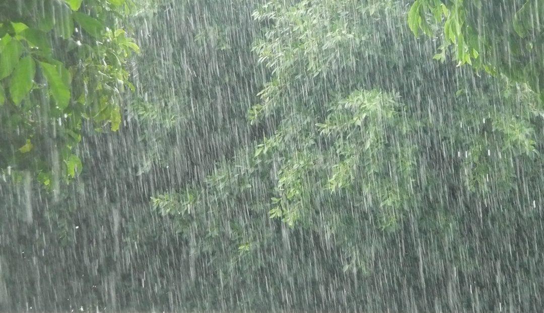 Más lluvias y en situaciones más diversas