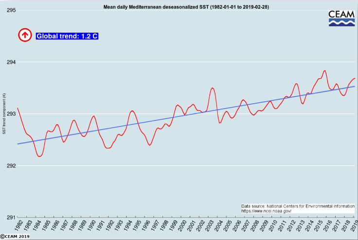 Informe de la incidencia del calentamiento global en el Mediterráneo