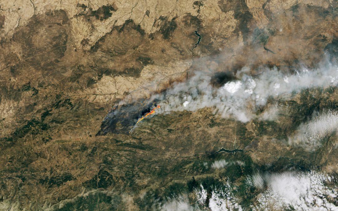 La ola de calor y los incendios forestales abrasan España
